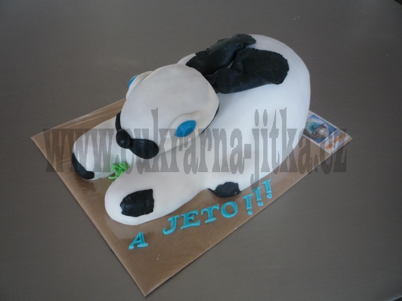 dort zvířátko  králík II.