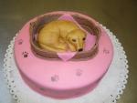 pejsek v pelíšku dort  č.300
