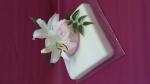 dort patrový živé květy orchydejí