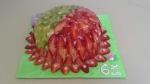 Racio dort - šlehačka malinová Šarlota,plát bílý,ovoce jahody,kiwi,žele
