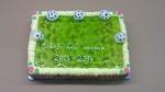 dort obdelník marcipánové míče, želé,kiwi