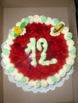 dort kulatý IX. ovocný  č.66