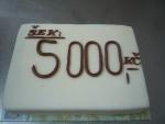 šek dort     č.337