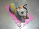 zvířátko dort, 3D kočička č.644