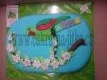 dort ovál  papoušek  č.634