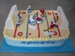 letní hokej  dort  č.531