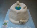 dort lední medvědi  č.628