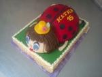, beruška na obdelníku dort č.568