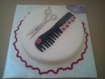 kulatý dort pro kadeřnici nůžky,hřeben č.717