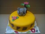 dort sloník,palma