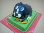 dort černý pokojový králíček,morče